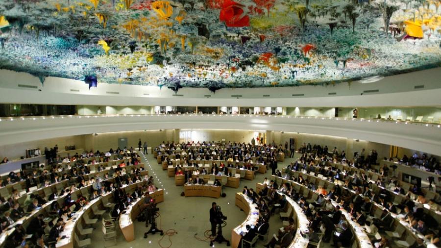 human rights hotline